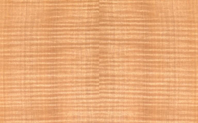 メイプル材の表面の写真です